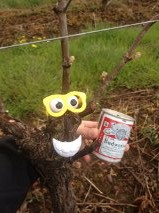 "The vines at PSV will be having ""budbreak"" all week.  Seriously,  it happens this way every year! 4/14/13"