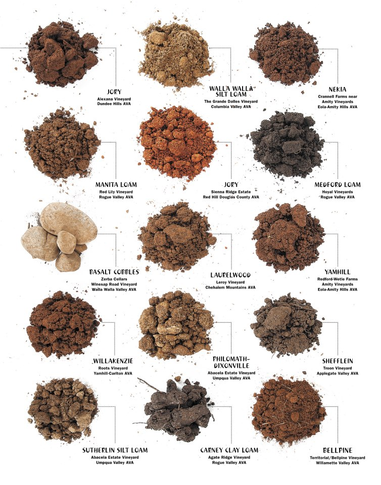 Different types of soil with names for Information about different types of soil